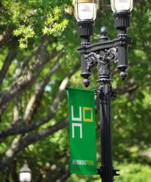Hemming-Light-Banner