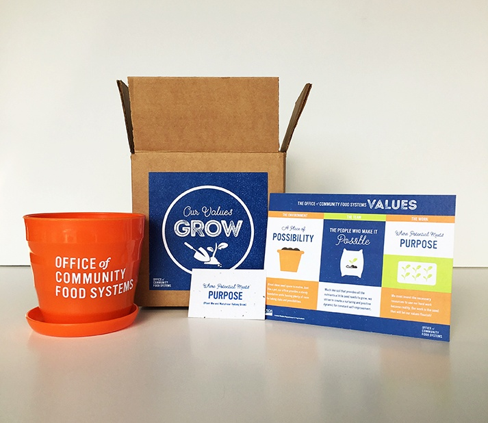 "The kit with pot, poster, directions, and box labeled ""Our Values Grow."""