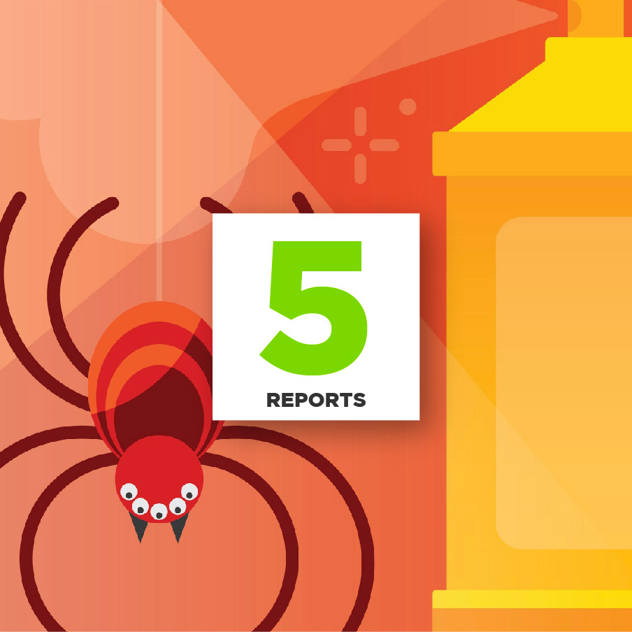 5 Reports